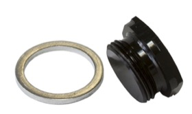 <strong>Holley Fuel Bowl Inlet Blank Plug</strong> <br />Black finish, 7/8