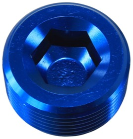 "<strong>NPT Plug 1"" </strong><br /> Blue Finish"